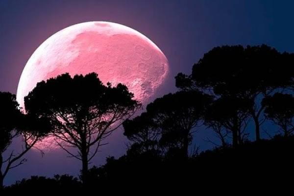 Superluna Rosa 2020: cuándo es y cómo verla por Internet en México
